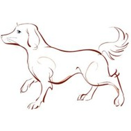 Chinese Zodiac Sign: Dog