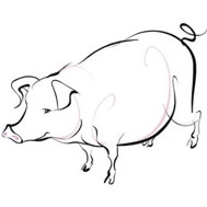 Chinese Zodiac Sign: Pig