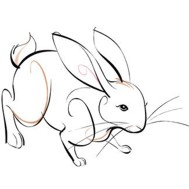 Chinese Zodiac Sign: Rabbit