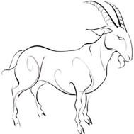 Chinese Zodiac Sign: Sheep