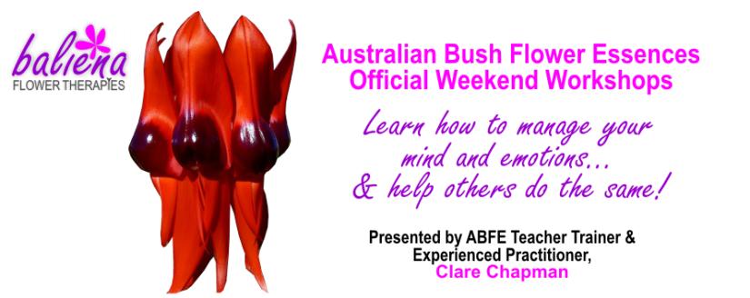 Official Australian Bush Flower Essences Workshops with Clare Chapman